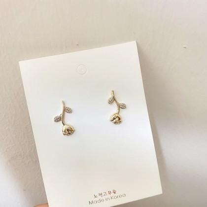 AS005009 EARRINGS